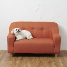 【WEB限定】ペットのソファ 2P