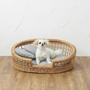 【WEB限定】ラタンのペットベッド 写真