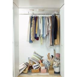 felsto 縦型フェルト リビング収納BOX 収納場所に困るバッグやファッション小物も…