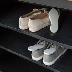 soleau/ソレウ 吸水・速乾・消臭靴用 ドライングボード 2足組(4枚)