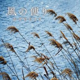 季ノ布 しなやか涼感 風の便り 洗える麻肌掛けふとん シングルサイズ 穏やかな風がそよぐ湖畔の風景をイメージし、日本発祥のよろけ織りによる波形模様でゆらめきを表現しました。