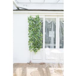 グレープリーフのグリーンカーテン グリーンの幅はお好みで寄せることもできます。