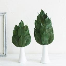 プレミアム榊(丹波産高級椿葉使用) Mサイズ1対 サイズ比較 右:Mサイズ、左:Sサイズ