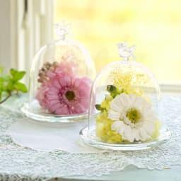 ガラスドーム入りプリザーブドフラワー ガーベラ そのまま飾れるガラスドームに入ったアレンジメント 左:(ア)ピンク 右:(イ)ホワイト