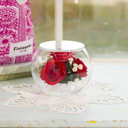 ドームフラワー Мサイズ ローズ レッド ガラスのドームに入った真っ赤なバラのエレガントなアレンジ