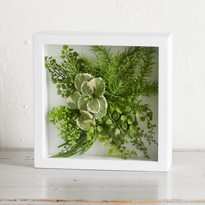 ガラスフレームグリーン Lサイズ ガラスフレームのウォールグリーン ア)ミント