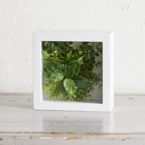 ガラスフレームグリーン Mサイズ 写真