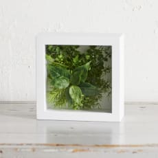 ガラスフレームグリーン Mサイズ