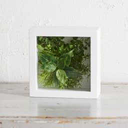 ガラスフレームグリーン Mサイズ インテリアに!ガラスフレーム入りのインテリアグリーン ア)ブロッサムリーフ