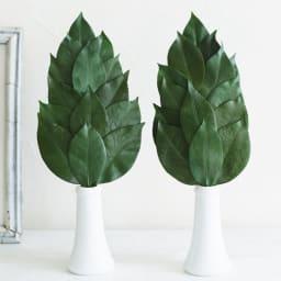 プレミアム榊(丹波産高級椿葉使用) Mサイズ1対 国内産の椿を使用したプリザーブド榊です ※器は付属しません