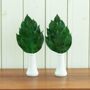 プレミアム榊(丹波産高級椿葉使用) Sサイズ椿葉増量版1対(2本組) 写真