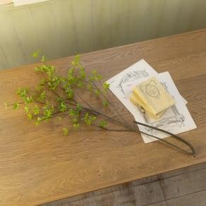 ドウダンツツジ ロングサイズ(花材のみ) 写真