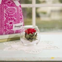 ドームフラワー Sサイズ ローズ レッド 凛と上を向いた一輪の赤バラがガラスドームに。