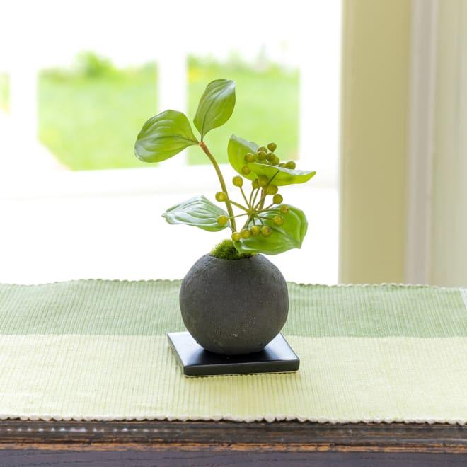CUPBON 檜炭ボール サンキライ 丸い実と葉が可愛らしいサンキライを檜炭ボールにアレンジ