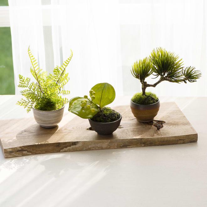 【CUPBON/カップボン】 ぐいのみ3個 茶×黒セット 木製盆は商品に付属しません。