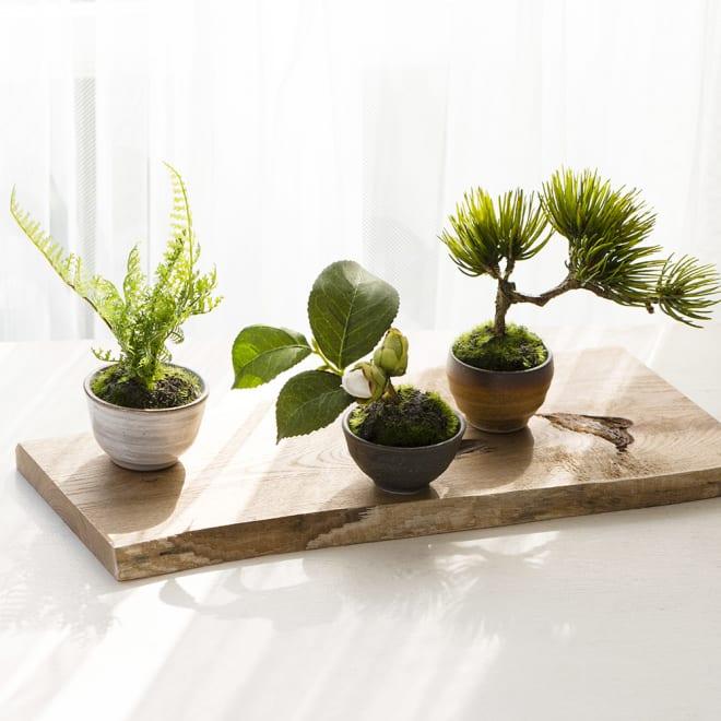 【CUPBON/カップボン】 ぐいのみ3個 椿セット 木製盆は商品に付属しません。
