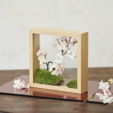 インテリアフレームフラワー 桜の庭園