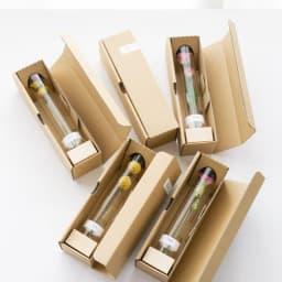 ボトルドライフラワー<リアン> 一つずつ箱に入れてお届けします