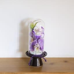 ガラスドームの供花 コチョウラン (イ)パープル系