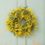 春を告げるフレッシュ ミモザリース