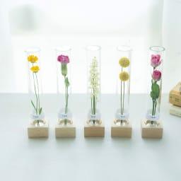 ボトルドライフラワー<リアン> ドライフラワーをボトルにつめ、花言葉とともに飾れるようにアレンジしました