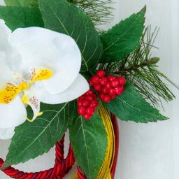 タッセル付き胡蝶蘭迎春リース