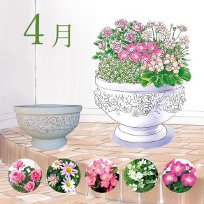 【毎月届くお花の頒布会】らくらく華やかガーデンコース(2021年4月~2021年9月) 写真