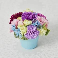 【母の日ギフト】花言葉は、「永遠の幸福 」ムーンダストアレンジメント「ジュエルムーン」