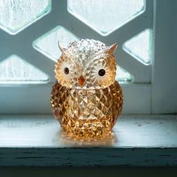 LEDライト付小物入れ フクロウ カッティングが美しいふくろうの小物入れ ※点灯時