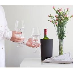 magisso/マギッソ ピノ・ワイングラス(2個組) 使用例