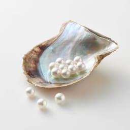 K18WGアコヤパールダイヤペンダント  あこや真珠は、国産の高品質8mm珠を使用。