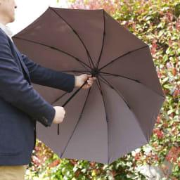 [メンズ]小宮商店ミラトーレ折畳み傘 親骨にはグラスファイバーを使用。折りたたみ傘には珍しい10本骨。軽く丈夫でよくしなるため、風に強い傘になっています。