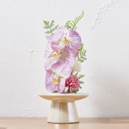 ガラスドームの供花胡蝶蘭         (イ)ピンク ドームを外してお使いいただいても。