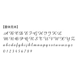 ディアカーズ 名入れタブレットポーチ ルドゥーテ コレクション 書体見本 ※アルファベット・数字のみ10文字まで。1文字目は大文字あとは小文字になります。記号は入れられません。