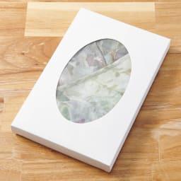 軽量ドレスエプロン 水彩画タッチ  ギフトボックス入り ボックス入りでプレゼントにもおすすめです。