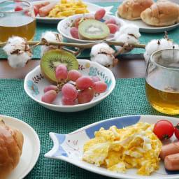 ハレクタニ ネコ皿 【選べる2枚組】 長皿は、意外に使いやすい!