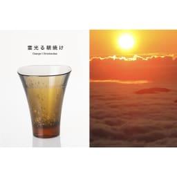 ヤマナミグラス 2個セット Plakira
