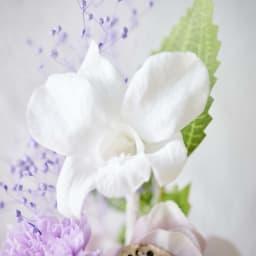 ミニガラスドーム供花 お線香付き 高貴な印象の蘭(デンファレ)のプリザーブドフラワー。