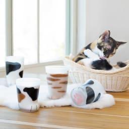 coconecoグラス(子猫) 子猫グラスその名の通り120mlの可愛い小ぶりサイズ。模様は、(ア)ミケ、(イ)トラ、(ウ)ブチの3種類。