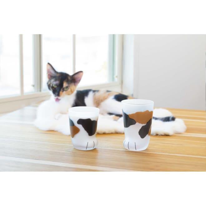 coconecoグラス(親猫) (ア)ミケ 親猫グラスはしっかり入る300mlサイズ。※左の商品は、子猫グラス(申込番号GF0144)です
