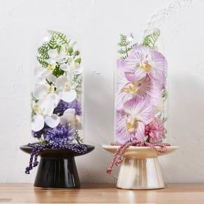 ガラスドームの供花胡蝶蘭  写真