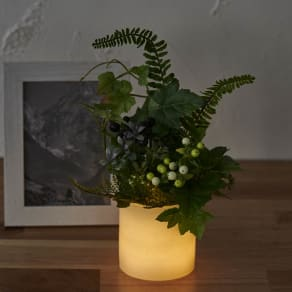灯る仏花 グリーン 写真