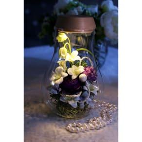灯る仏花(R) 蘭 写真