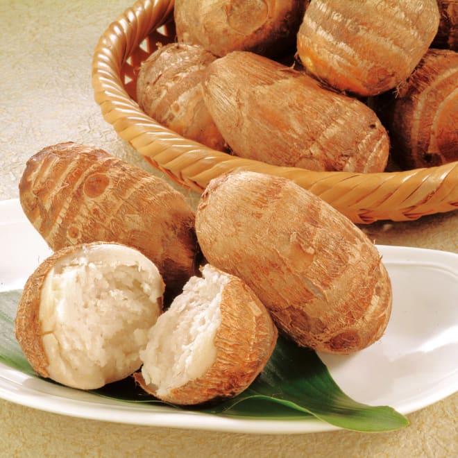 山形産 つるり里芋(土付き) (約3.5kg) JAさがえ西村山からしか出荷されない希少品種です。