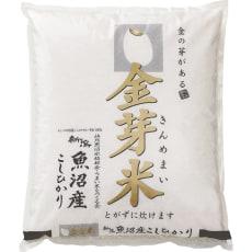 魚沼産こしひかり金芽米 4kg(2kg×2袋)【定期便】