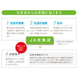 魚沼産こしひかり 一等米 精米 or 玄米 4kg(2kg×2袋) 【定期便】 生産者からお客様に届くまで