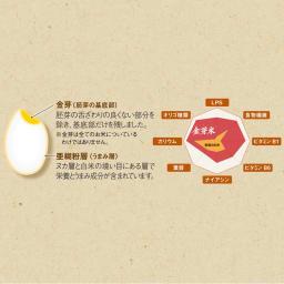 魚沼産こしひかり金芽米 4kg(2kg×2袋) 【1回お試しコース】 東洋ライスの精米技術により「金芽」と呼ばれる胚芽の一部と米のうまみ層を残している、美味しさも栄養にも気遣ったお米です。