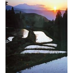 木島平村限定 北信州みゆき 幻の米 精米 チャック式スタンドパック 4kg(2kg×2袋) 【1回お試しコース】 米作りに適した土地 木島平村は三方を山に囲まれ、内陸性気候で昼夜の寒暖差が大きく米作りに適した場所となっており、米作りの匠たちが美味しいお米を育てています。