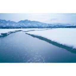 魚沼産こしひかり 一等米 SS米限定 「氷温熟成米」プレミアム 4kg(2kg×2袋) 【定期便】