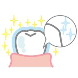 ビクトリアローズ ホワイトローズティースジェル(医薬部外品) 60g 【お得な定期便】 【ホワイトニングのメカニズム】汚れが落ちてきれいになった歯をポリリン酸ナトリウムがコーティングし再び汚れないようにします。